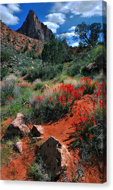 Trail To The Watchman Canvas Print