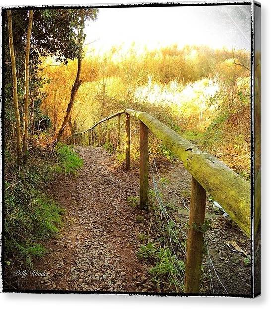 Warwickshire Canvas Print - Trailhead In Hartshill Hayes Country by Polly Rhodes