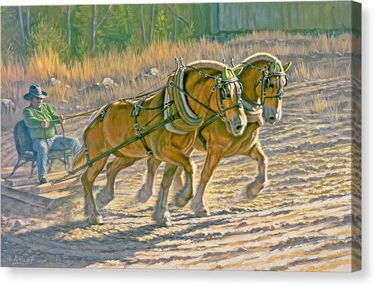 Draft Horses Canvas Print - Training For The Pull  by Paul Krapf