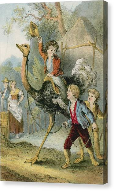 Ostriches Canvas Print - Training The Ostrich by English School