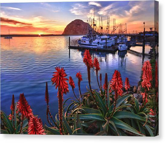 Tranquil Harbor Canvas Print
