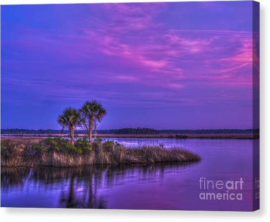 Mangrove Trees Canvas Print - Tranquil Palms by Marvin Spates