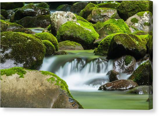 Tranquil Water Canvas Print