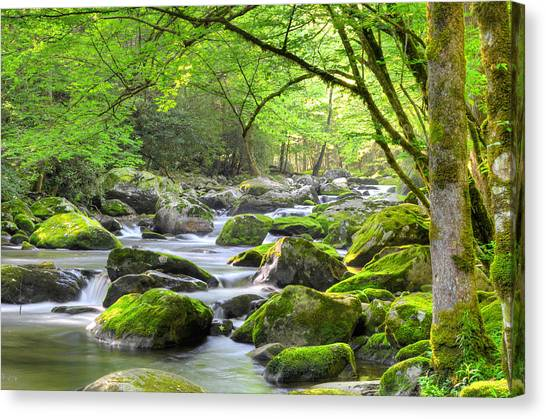 Tranquil Waters Canvas Print by Mary Anne Baker