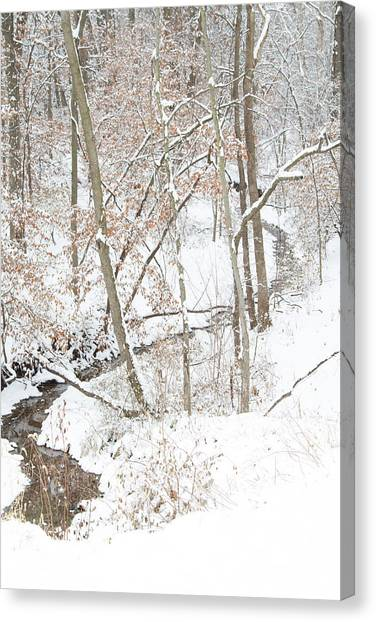 Tranquil Winters Creek Canvas Print