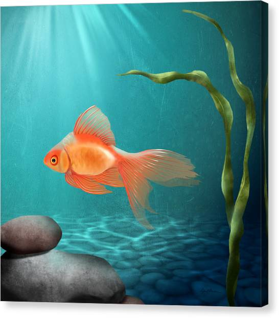 Goldfish Canvas Print - Tranquility by April Moen