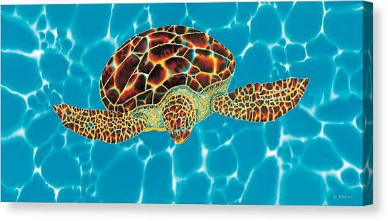 Caribbean Sea Turtle Canvas Print