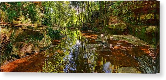 Tranquility Revisited Canvas Print
