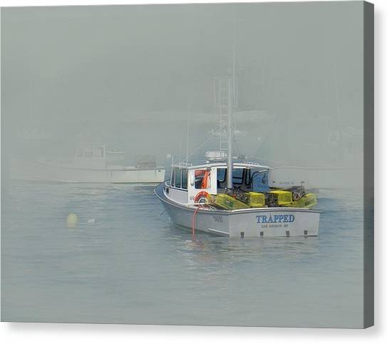 Trapped In The Fog Canvas Print