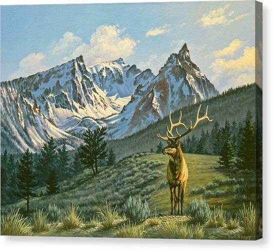 Elk Canvas Print - Trapper Peak - Bull Elk by Paul Krapf