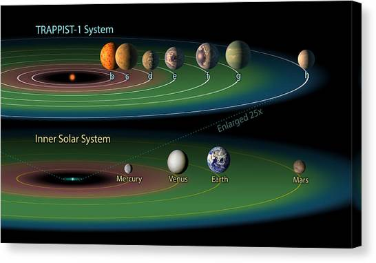 Infographic Canvas Print - Trappist-1 Habitable Zone by Science Source