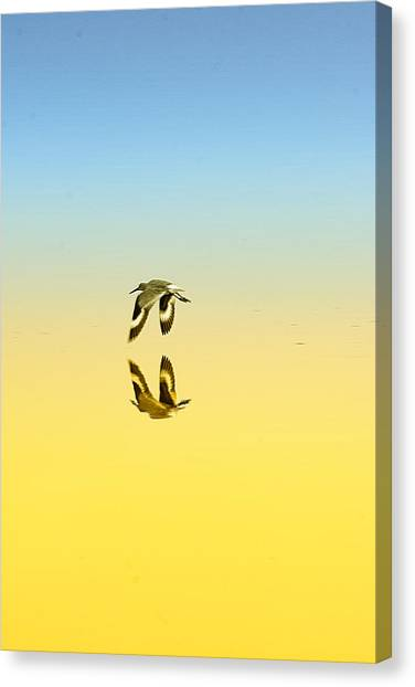 Canvas Print featuring the photograph Travel In Stillness by Mike Trueblood