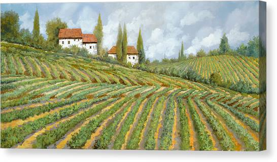 Red Wine Canvas Print - Tre Case Bianche Nella Vigna by Guido Borelli