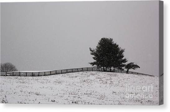 Tree And Fence In Snow Storm Canvas Print