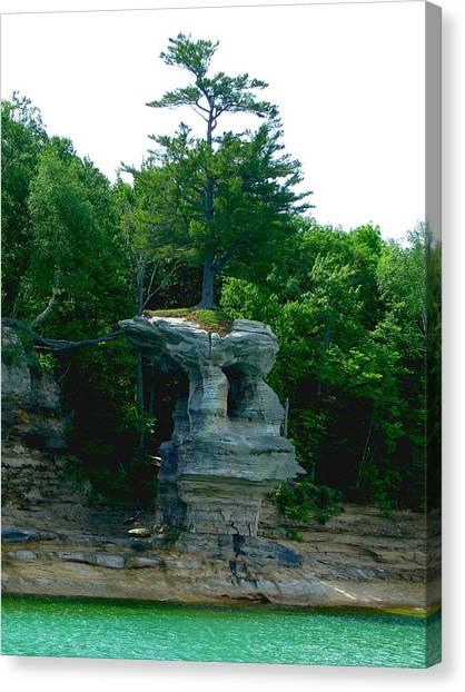 Tree Atop Chapel Rock Canvas Print