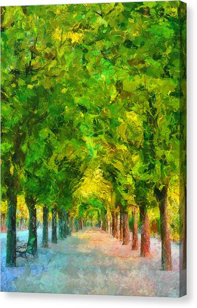 Tree Avenue In The Vienna Augarten Canvas Print