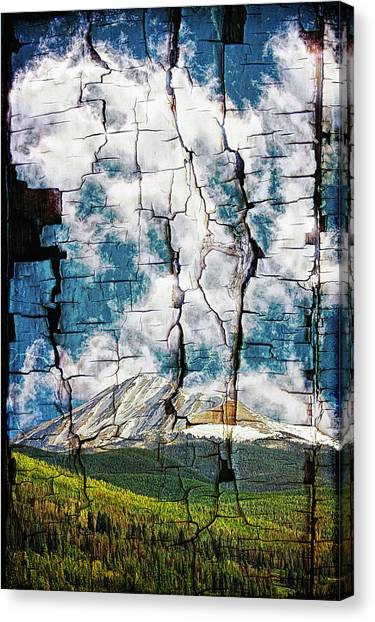 Tree Bark Mountain Tapestry Canvas Print