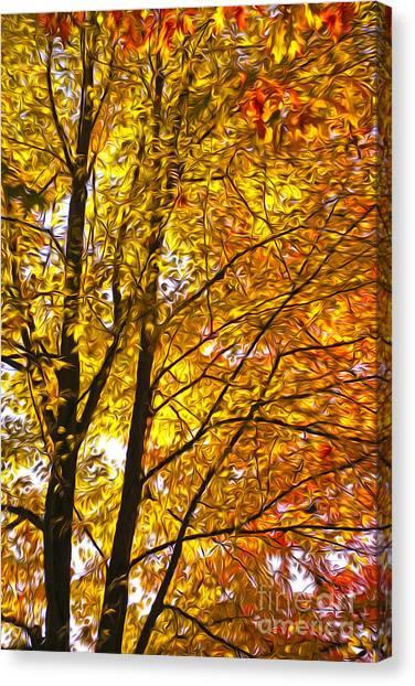 Tree Brightness Canvas Print by Nur Roy