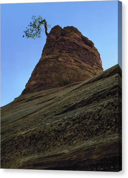 Tree Hoodoo Canvas Print