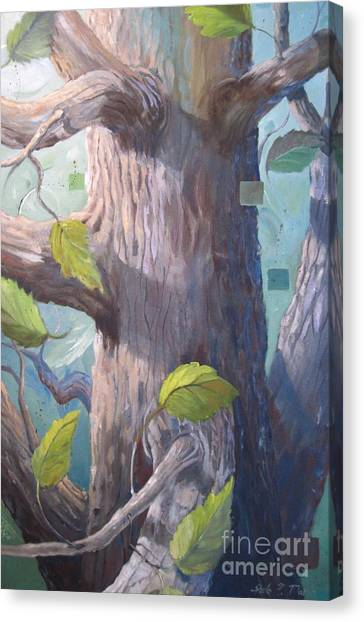 Tree Hugger Canvas Print by Paula Marsh