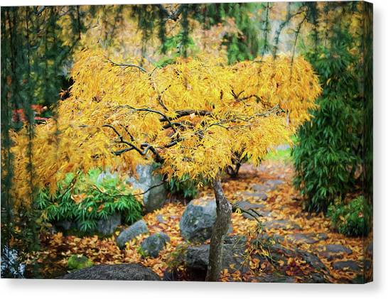 Fallen Leaf Canvas Print - Tree In Full Autumn Glory, Oregon, Usa by Panoramic Images