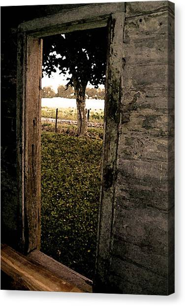 Tree In The Window Canvas Print