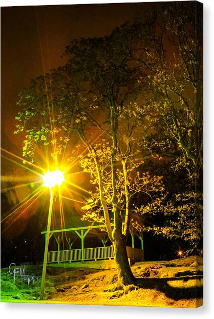 Tree Lights Canvas Print