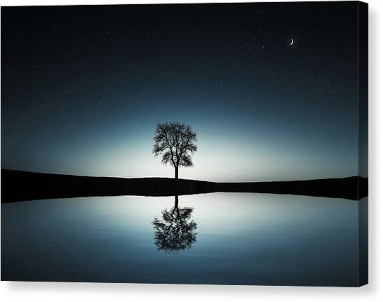 Tree Near Lake At Night Canvas Print