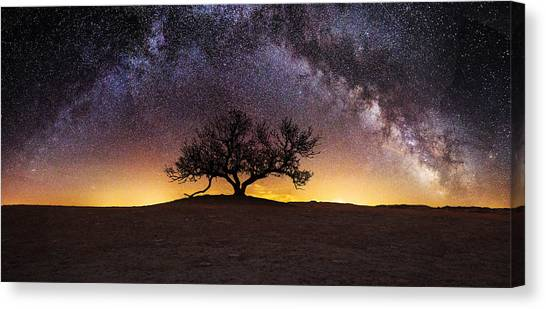 Tree Of Wisdom Canvas Print