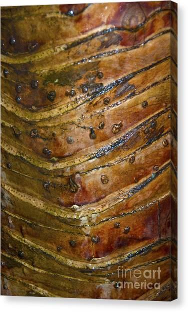 Tree Pattern II Canvas Print