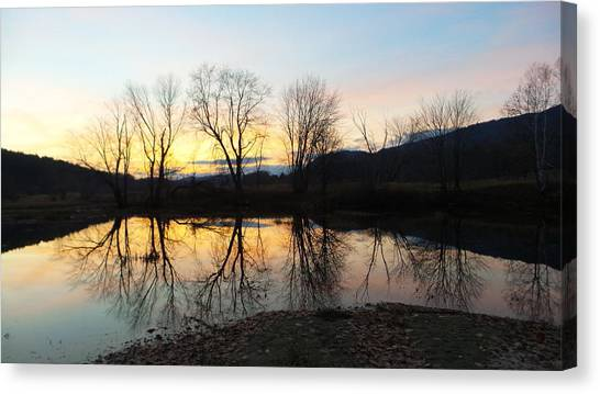 Tree Reflections Landscape Canvas Print