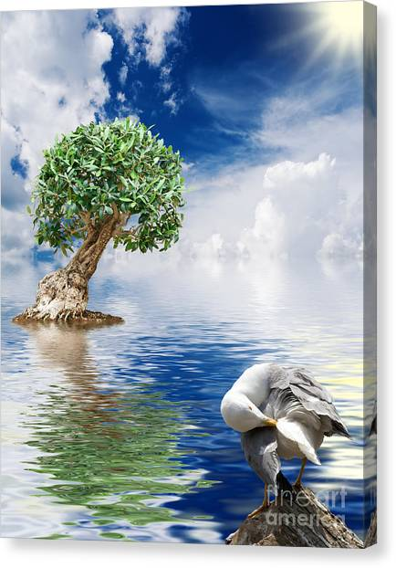 Tree Seagull And Sea Canvas Print