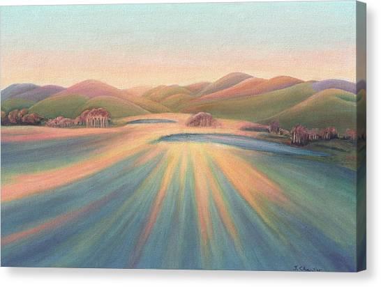 Tree Shadows Sunset Tasmania Canvas Print