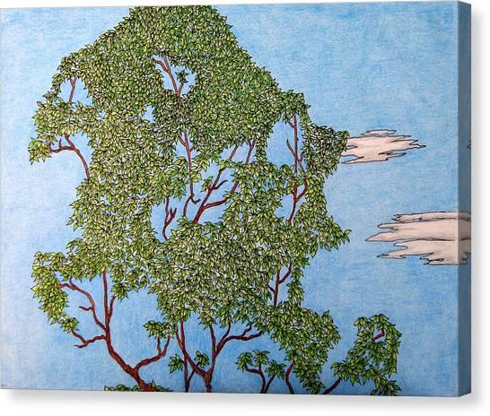 Tree Top 1 Of 3 Canvas Print