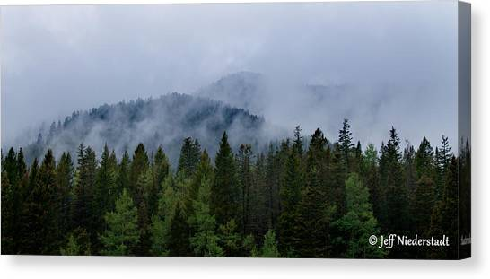Tree Top Clouds Canvas Print