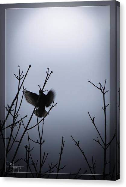 Tree Top Landing Canvas Print