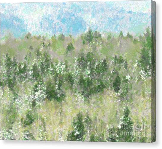 Tree Tops Canvas Print