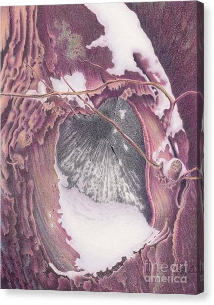 Treeheart Canvas Print