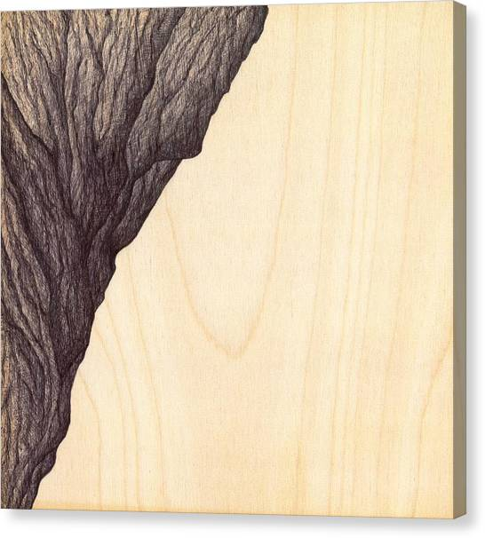 Treerock  Canvas Print