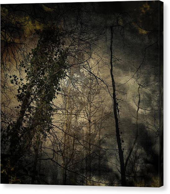 Trees 4 Canvas Print