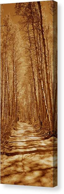 Log Cabin Canvas Print - Trees Along A Road, Log Cabin Gold by Panoramic Images