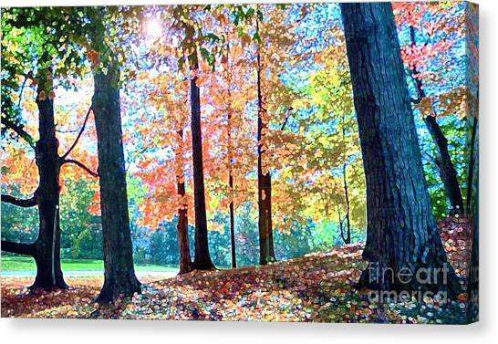 Trees Along The Lyman Estate Canvas Print