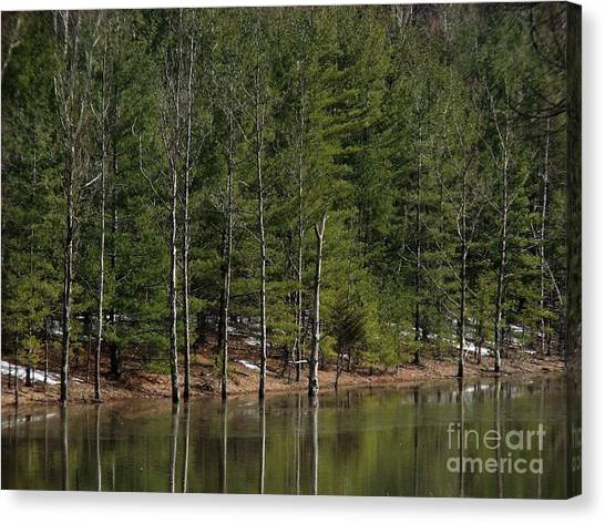 Trees At The Reservoir Canvas Print