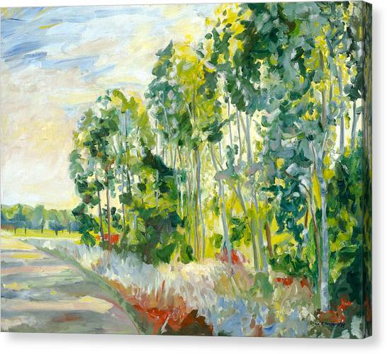 Trees By A Road Canvas Print