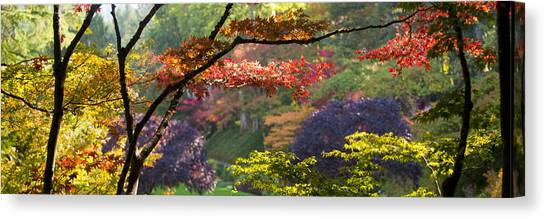 Vancouver Island Canvas Print - Trees In A Garden Butchart Gardens by Panoramic Images