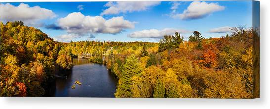 Marquette University Canvas Print - Trees In Autumn At Dead River by Panoramic Images