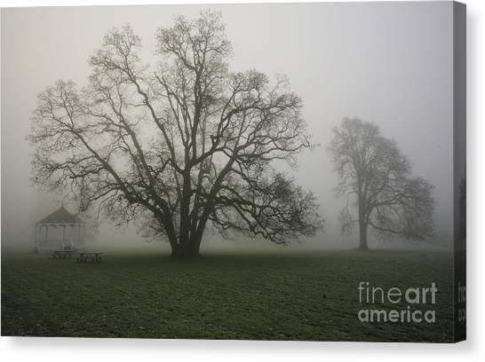 Trees In Fog Canvas Print