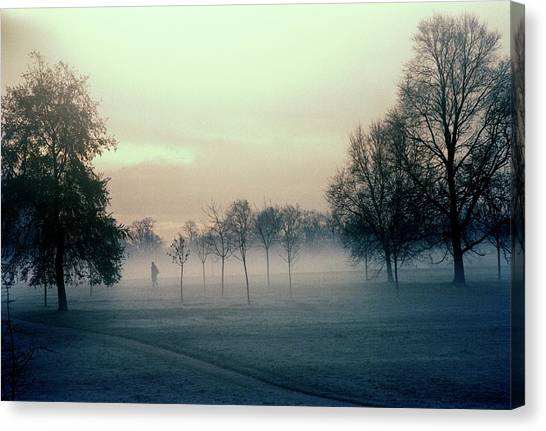 Hyde Park Canvas Print - Trees In Mist by Martin Riedl/science Photo Library