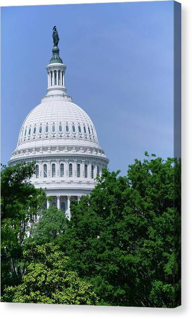 Neoclassical Art Canvas Print - Trees In Spring And U.s. Capitol Dome by Panoramic Images