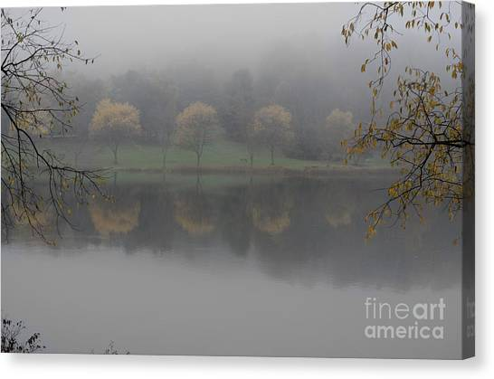 Trees In The Fog Canvas Print by Stephanie Emond